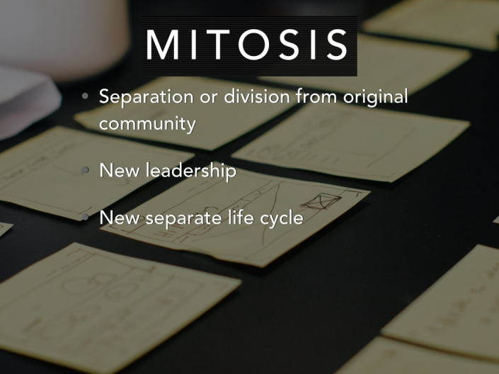 Community_Lifecycle.018
